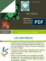 02-BACTERIAS.pdf
