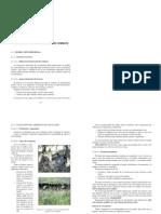 2.1.a Instrucción Táctica de Orden de Combate. instrucción i