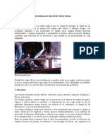 SEGURIDAD E HIGIENE INDUSTRIAL(final).doc