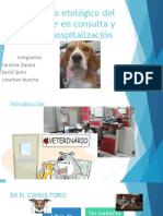 Análisis FODA de La Clínica Veterinaria
