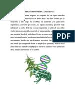 Aportes de Aristoteles a La Biología