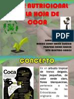 VALOR NUTRICIONAL DE LA HOJA DE COCA_ VALERIA.pptx