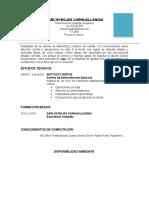 Modelo de CV2.docx