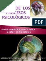 Bases de Los Procesos Psicológicos