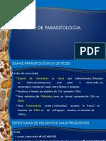 Revisão de Parasitologia