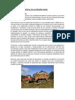 EXPLOTACIÓN FORESTAL EN LA REGIÓN PUNO (subir).docx