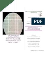 Biorreactores_Práctica-1.docx