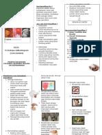 leaflet keputihan arum.doc