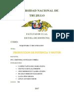 GRUPO 3- PRODUCCION DE POTENCIA Y MOTOR.docx