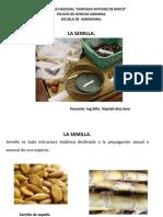 La semilla- Botánica - Prop. Plantas...pptx