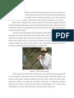 Geologi Glada Perak
