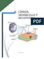 Lipidos, Membranas y Receptores