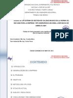 346162808-Diseno-Sistema-Gestion-Calidad-Basado-Norma-Iso-9001-2008.ppt