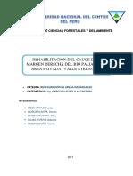INFORME PALIAN.pdf
