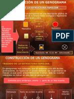 Clase Genograma.ppt2