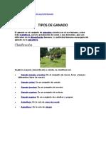 TIPOS DE GANADO .docx