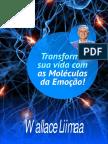 Antonio celso tese ebook molculas da emoo arte 6pdf fandeluxe Choice Image
