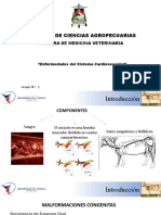 Clinica Menor;; Enfermedades Del Sistema Cardiovascular (Bovinos)