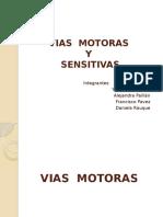 Viassensitivasymotoras1 120507224226 Phpapp02 (2)