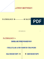 Pathology Mm Relations