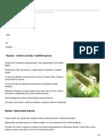 alternativa-za-vas.com-Trputac.pdf