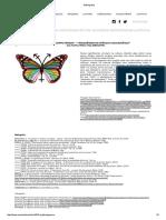 Bibliografia transgenero