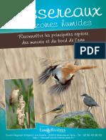 Passereaux des Zones humides - Livret Eau & Rivieres de Bretagne