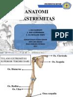 anatomi ekstremitas.pptx
