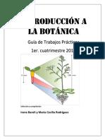 GuiaTPBotanica1er2017completa.pdf