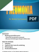Pneumonia, Ai, Swine, Flu Burung