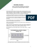 INFORME_TECNICO_Ampliacion_retorta_CRCentral.pdf