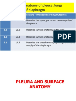 L5 Surface Anatomy & Diaphragm