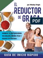 El reductor de Grasa.pdf