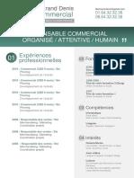 CV-Commercial_V3 (1).docx