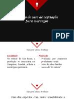 Estufa_morango.pdf