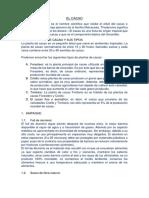 EL CACAO Resumen