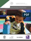 Manual_Complementario.pdf