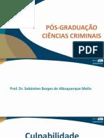 Aula 09 - Ciências Criminais - Slide Atualizado