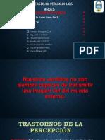 TRANSTORNOS DE LA PERCEPCION.pptx
