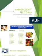 Aminoácidos y Proteínas Bioquimica IV Unidad