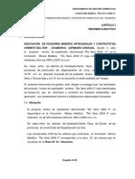 CAPÍTULO I - Jicamarca (1)