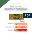 LA RESISTENCIA ELÉCTRICA.docx