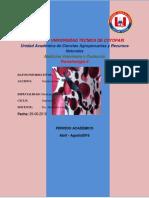 Informe Parasitologia Heces Toro