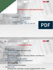 4 Satellite Services Regulatory Issues and Broadband Internet