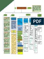 mapa conceptual de politica de ambiente