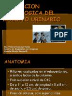 Evaluacion Radiologica Del Aparato Urinario
