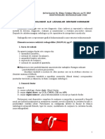 Diagnosticul Rx - Curs an IV Cristina Marcov