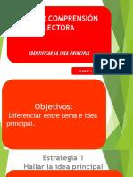 Presentacion Idea Principal y Tema Taller 1