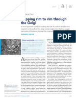 Hopping Rim to Rim Through the Golgi
