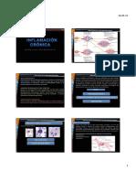 INFLAMACION CRÓNICA (1).pdf